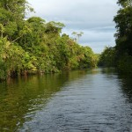 Cahuita Nationaal Park